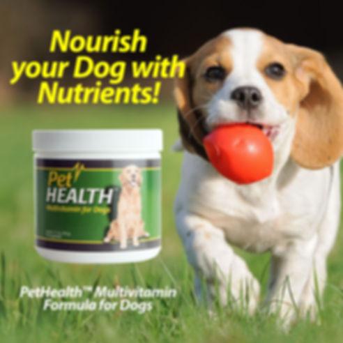 Pet Health Multivitamin Formula for Dogs