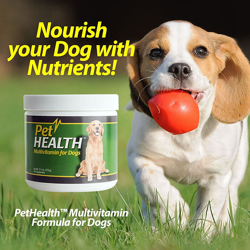 Pet Health Multivitamin Formula for Dogs