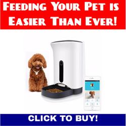 HOOHI's Auto Pet Feeder