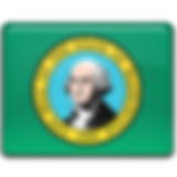 Washington-Flag-256.png