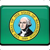 Washington-Flag-256.png
