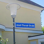 thorak_orf.jpg