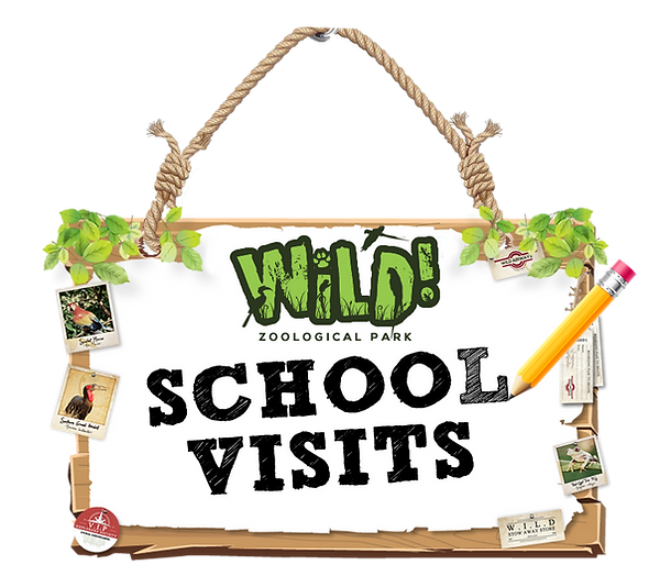 TimberBoard_SchoolVisits_F.png