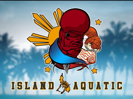 Island Aquatic Club