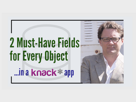2 Must-Have Fields for Every Object in a Knack App