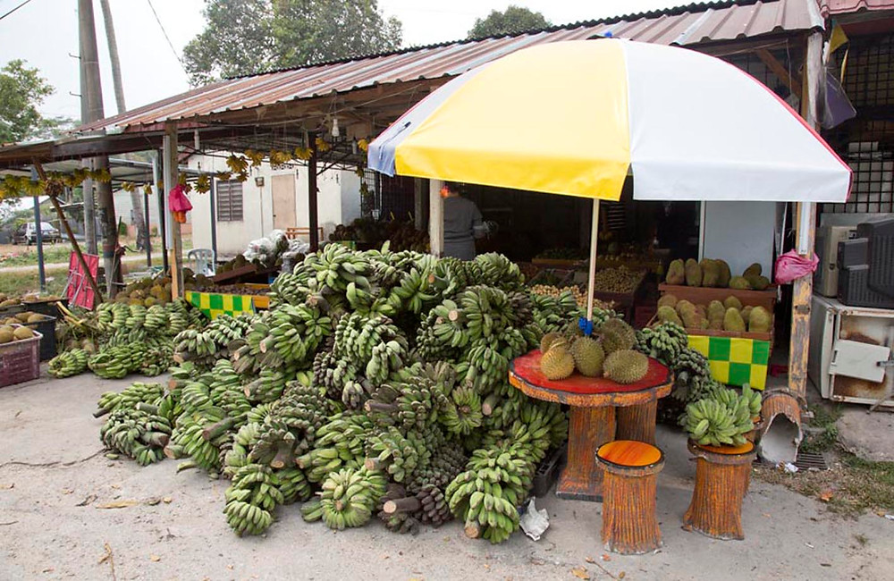 A fruit stall on the way from Seremban to Kuala Pilah, near Seremban. Photograph by Nic Falconer nicaliss from serembanonline