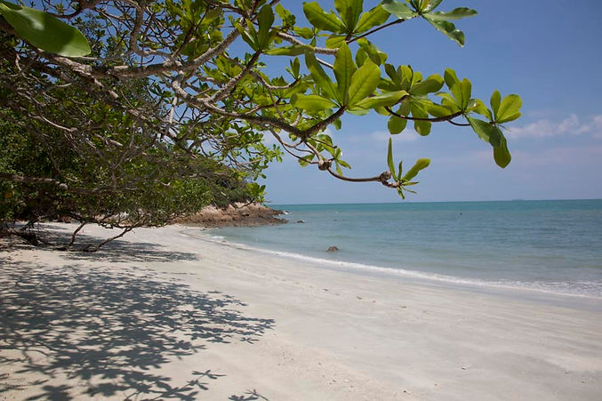 Beach, sand, water , trees at Cape Rachado/Tanjung Tuan