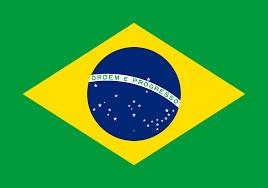 N.E.W.S.® in Brazil