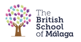 BSM Logo Colour.png