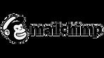 mailchimp-logo-trans.png