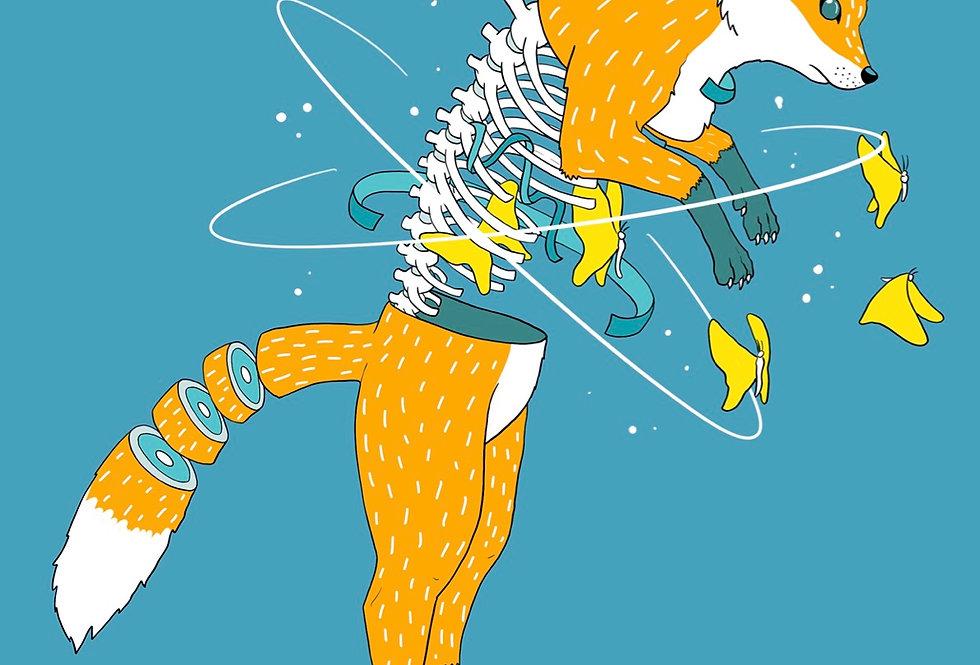 X-ray Fox