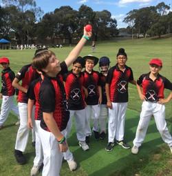 Joy of cricket 2