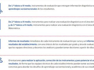 DIAGNÓSTICO INTEGRAL DE APRENDIZAJES