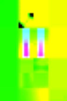 newpix15_700.jpg
