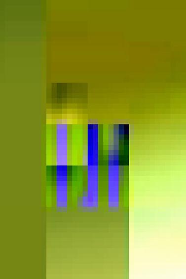 newpix8_700.jpg