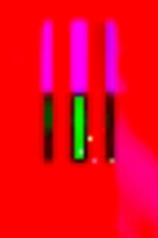newpix3_700.jpg
