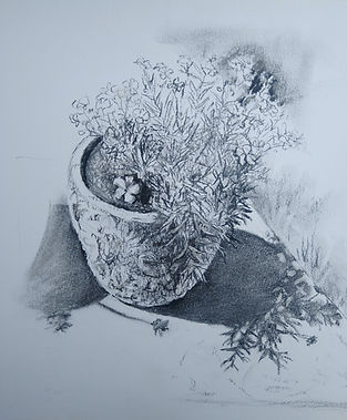 Garden pots with shadows3 - Charcoal.jpg