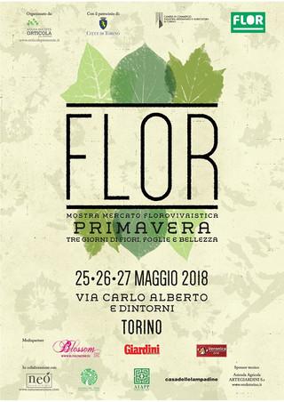Nericata a Flor - Torino dal 25 al 27 maggio 2018
