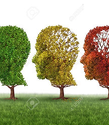 Mental Illness for General Practice