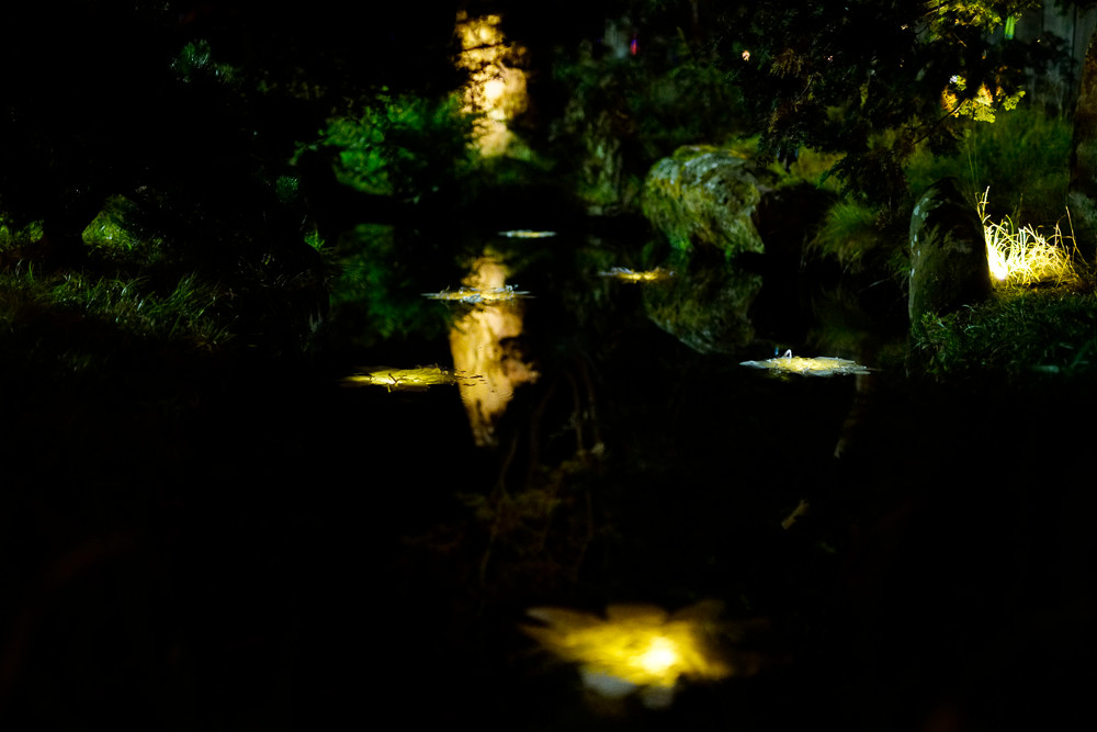 Autumn_Lights006.JPG