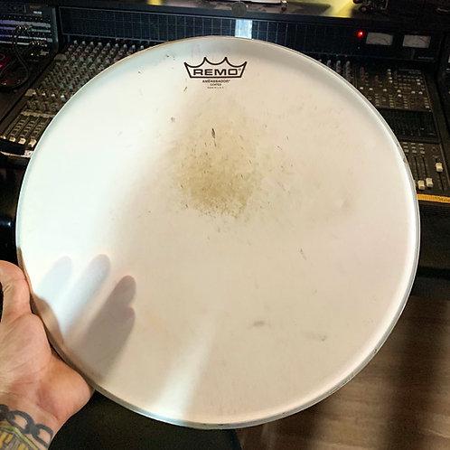 Signed Remo Drum Head