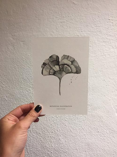 """Postkarte - """"GINKGO BILOBA"""""""