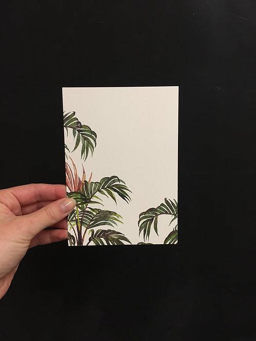 Postkarte 'jungle palm'