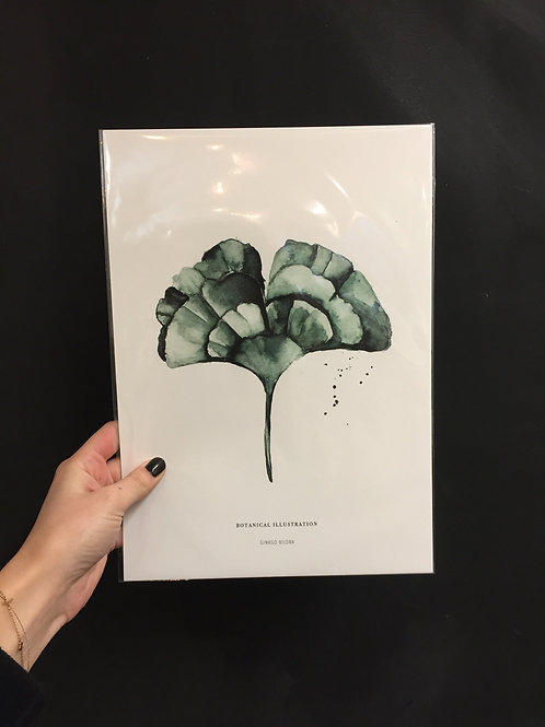 Ginkgo-Poster