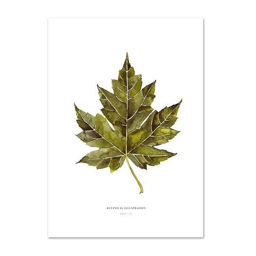 Poster 'Maple Leaf' DIN A3