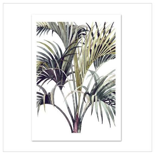 Poster 'Wild Palm' DIN A3