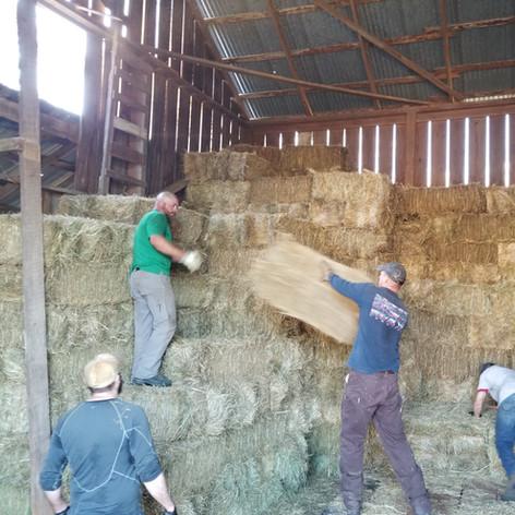 Eckholm Farm Whidbey Island WA Seasonal Crew