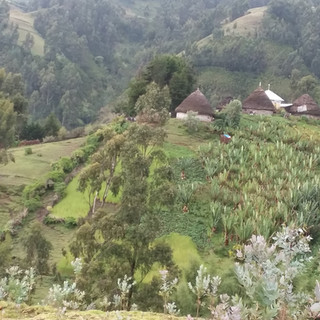 Ethiopian Education Fund Ethiopia 2