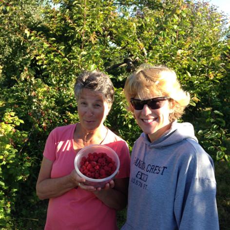 Eckholm Farm Whidbey Island WA Fruit