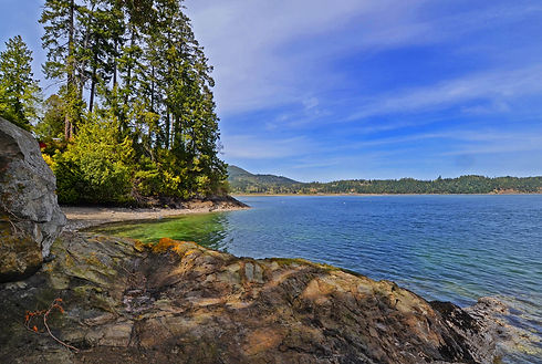 Vacation Homes on Hood Canal Madrona Waterfront 4