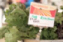 Hail Kale Salad