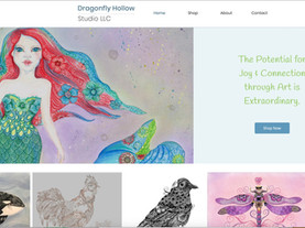 Dragonfly Hollow Studio