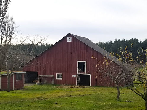 Eckholm Farm Dutch Barn.jpg