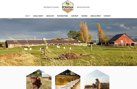 Eckholm Farm Website Project
