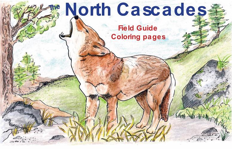 North Cascade Animal Covers Coyote resiz