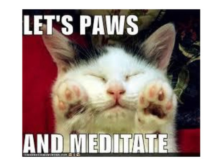 150 Reasons Why We Should ALL Meditate