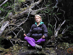 meditating in the temperate rainforest