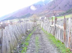 Mestia- country road