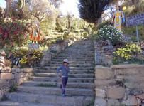 isla del sol - escalera del inca