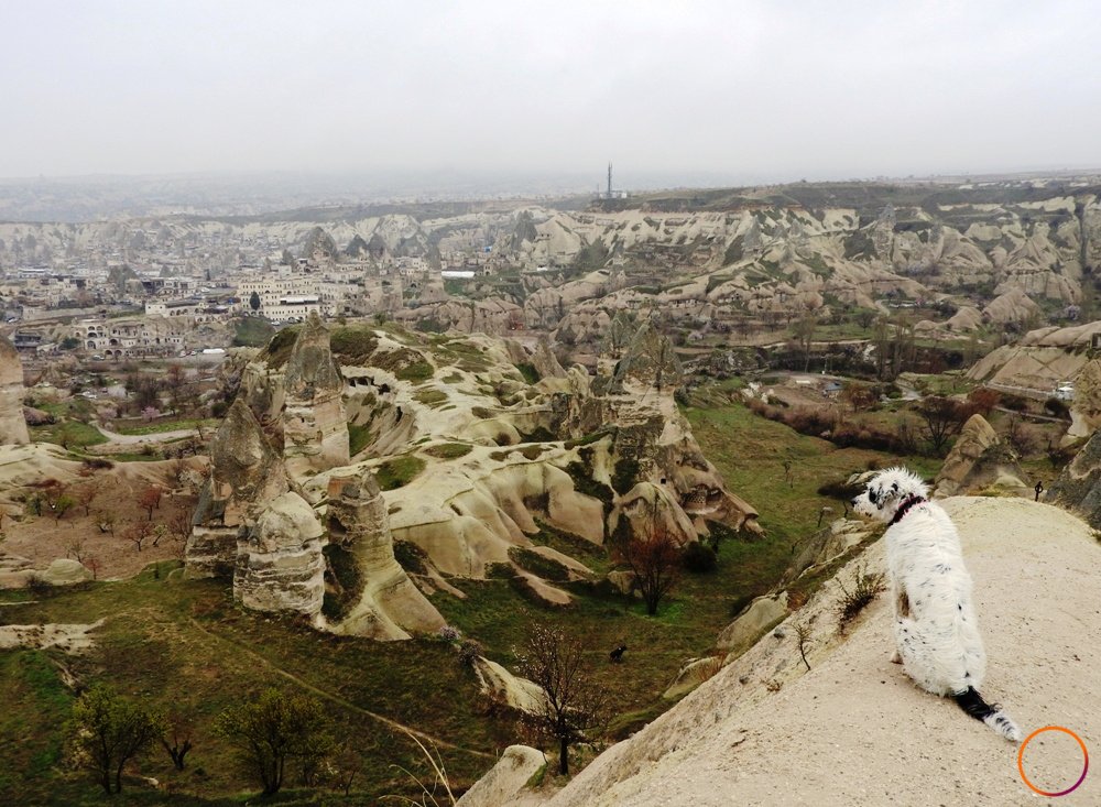 Cappadocia_dog's view