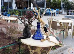 Istanbul_cat and shisha