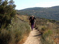 walking a trail