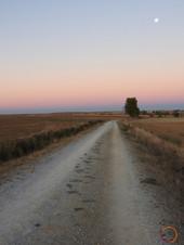 camino luna