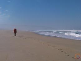along atlantic ocean