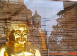 Ayuttaya_Thailand_Buddhas