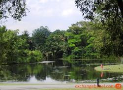 singapore_docks_park